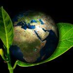 Tóra és környezetvédelem